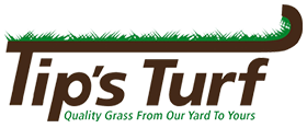 Austin Grass Supplier Central Texas